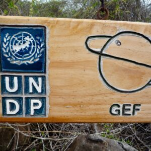 Report: UNDP audit looks into GEF projects