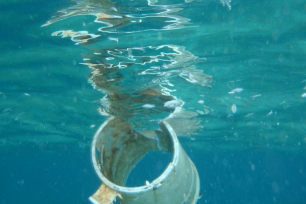WHO urges more study of microplastics