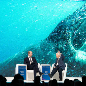 Nature in focus amid Davos extravagance